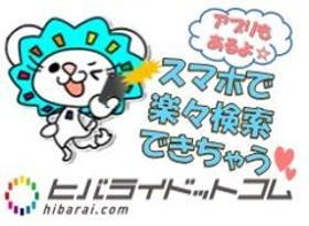 正看護師(サービス付高齢者向け住宅スタッフ/16-10時、手当あり)