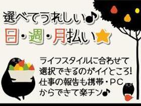 ピッキング(検品・梱包・仕分け)(入浴剤の箱詰め/土日祝休み、3交代、夜勤あり、日払、高時給)