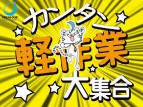 ピッキング(検品・梱包・仕分け)(倉庫内作業/栗橋駅よりバス有 12時開始 長期 日払い可)