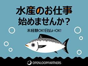 水産(12月末まで◆海産物の加工や仕分け業務◆週5~6日、7時間半)