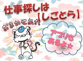 ピッキング(検品・梱包・仕分け)(お菓子検品/16-25時、日払い、未経験OK,週5、来社不要)