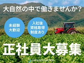 農業(青果物の選果、管理、畑作業、デスクワーク)