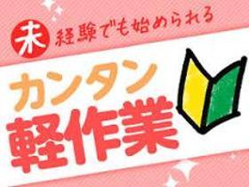 ピッキング(検品・梱包・仕分け)(検品作業/マイカー通勤OK/13:30開始/平日休/日払い)