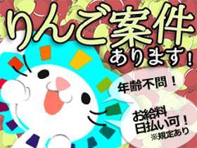 ピッキング(検品・梱包・仕分け)(9月1日~3月末/倉庫内でのりんごの仕分け/未経験歓迎)