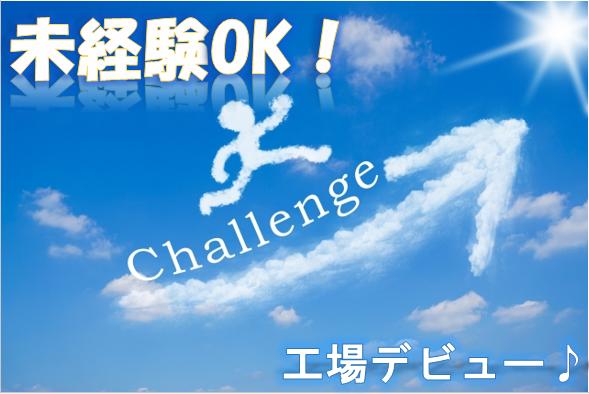 軽作業(お菓子の検品/土日含む週4~◇未経験◇フルタイム)