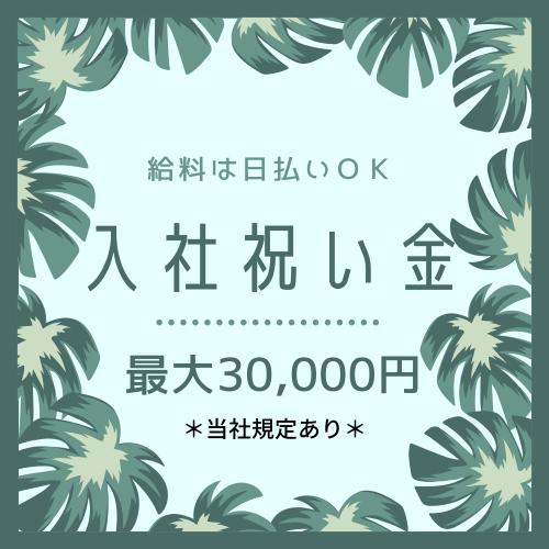 コールセンター・テレオペ(配送に関する問合せ/日払いOK/12時~21時/月20万以上)