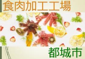 食品製造スタッフ(都城の食品工場/日払い、土日休み、日勤のみ、長期OK)