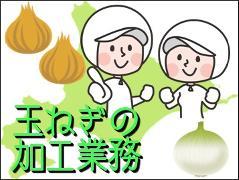 食品製造スタッフ(食品工場 長期 週5日 8時30分~17時30分 フルタイム)